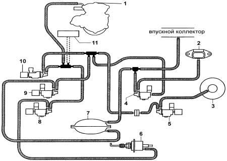 Схема вакуумных линий .